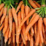 Ma recette de carotte bio : Boulettes carottes-cumin